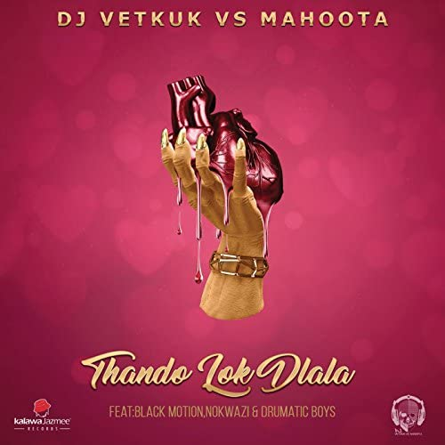 DJ Vetkuk & Mahoota feat. Black Motion, Nokwazi & Drumatic Boys