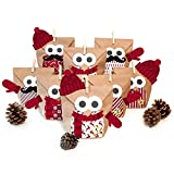 Adventskalender zum Befüllen Eule rot 24 Kraftpapiertüten Geschenktüten mit Extras Weihnachten,...
