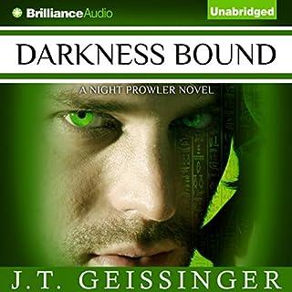 Darkness Bound cover art