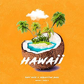 Hawaii (feat. Sebastian Bayl)