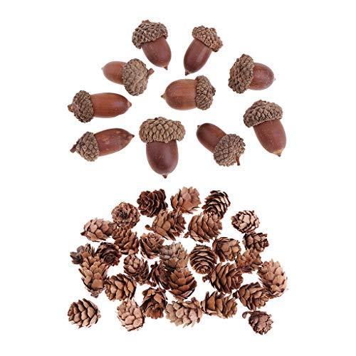 chiwanji 40pcs Mini Pommes De Pin Glands Fleurs Séchées Décorations De Noël Accents Ornements