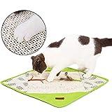 Koowaa Katzenkratzkissen Anti-Rutsch-Katzenkratzteppich mit Resonanzpapier und Bändern