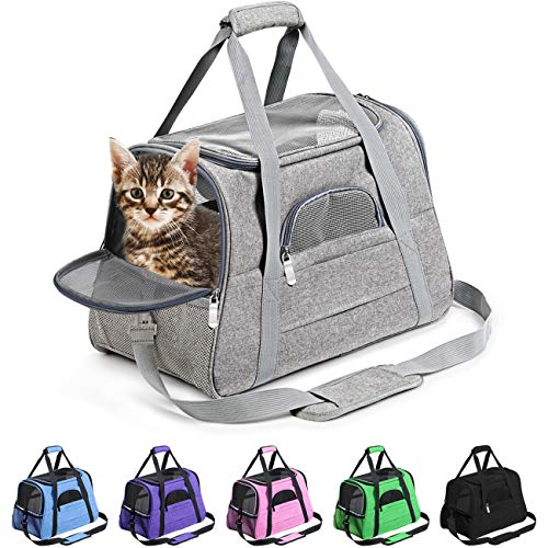 Prodigen Pet Carrier Airline Approved Pet Carrier Dog Carriers for Small Dogs, Cat Carriers for Medium Cats Small Cat, Small Pet Carrier Small Dog Carrier Airline Approved Cat Pet Travel Carrier-Green
