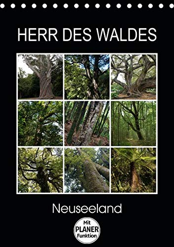 Herr des Waldes - Neuseeland (Tischkalender 2020 DIN A5 hoch): Neuseelands Pflanzen - ökologisch sehr vielfältig - entwickelten sich langsam im ... 14 Seiten ) (CALVENDO Natur)