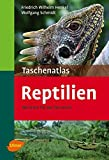 Taschenatlas Reptilien: 182 Arte...