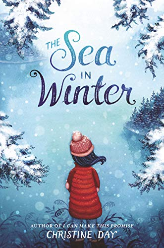 Product Image of the The Sea in Winter
