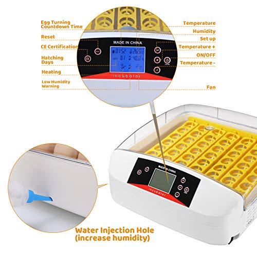 pedy Inkubator, Vollautomatische BrutmaschinenfürGeflügel bis 55 Hühnereier, Brutgeräte mit LED Temperaturanzeige und Feuchtigkeitsregulierung, Automatischer Flip-Hatcher für Mehrere Eigrößen