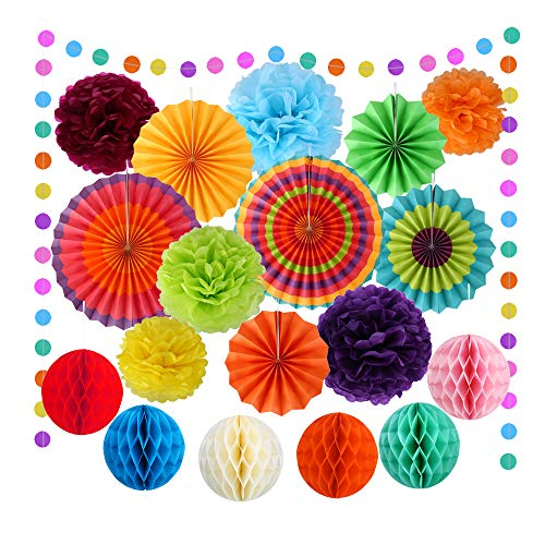 VEYLIN 20 Pieces Rainbow Party Supplies - Hanging Paper Fans Tissue PomPoms Flowers Honeycomb Balls Paper Circle Garland for Birthday Wedding Baby Shower Decoration