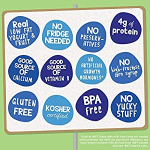 GoGo squeeZ yogurtZ, Variety Pack (Blueberry/Berry), 3 Ounce (60 Pouches), Low Fat Yogurt, Gluten Free, Pantry-friendly, Recloseable, BPA Free Pouches #3
