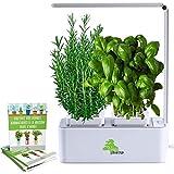 Green StartUp Smart Garden - Potager d'intérieur autonome sans arroser - Modèle 2020 - Inclus: Guide Cultivez vos herbes aromatiques à la maison toute l'année!