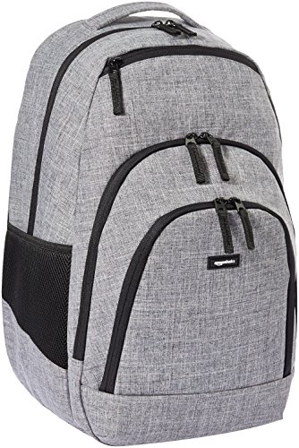 AmazonBasics Campus Laptop Backpack - Grey