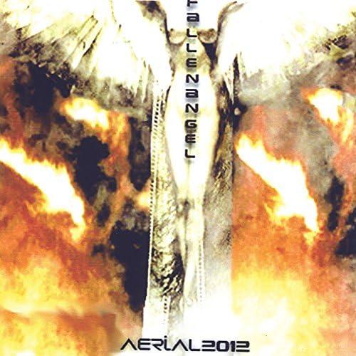 Aerial2012