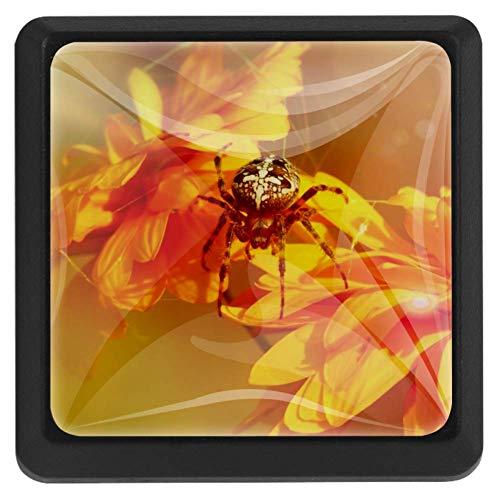 Spinnen-Chrysantheme Sun Golden 3er Pack Kabinett Knöpfe Edelstahl Schraube Schublade Knöpfe Platz Küchenschrank Hardware Kristallglas Knöpfe für Bad, Schrank, Kleiderschrank 37x25x17mm