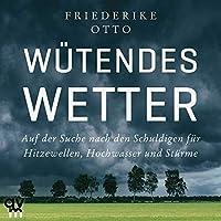 Wütendes Wetter Hörbuch