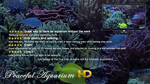 『Peaceful Aquarium HD』の2枚目の画像