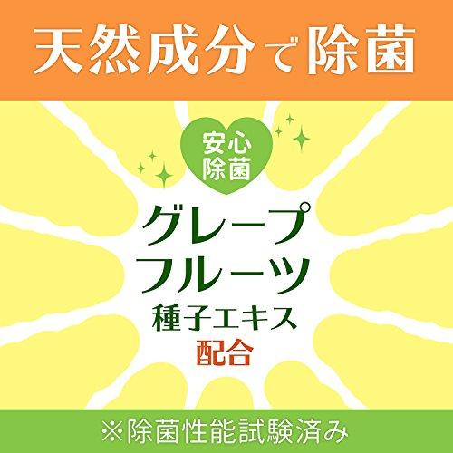 レックディズニー ミッキー&ミニー ウェットティッシュ 除菌ノンアルコール 1パック(60枚×3個) レック