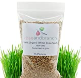 Organic Wheat Grass Seeds, Cat Grass Seeds, 16 Ounces- 100% Organic Non GMO - Hard Red Wheat. Harvested in The US. Easy to Grow.
