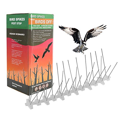 Hengda 5 Metros Base de Policarbonato 5-hileras de Púas antipalomas de Calidad para el Control de Aves, Premontado, Resistente e Inoxidable, Resistente a los Rayos UV y a la Intemperie