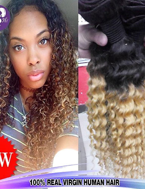 JFF  3pcs   lot 12  -26  raw brasilianisches reines Haar der tiefen Welle der Menschenhaarverlngerungen zwei Klangfarbe 1b   27 Lockenhaar