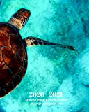 2020 -2021 18 Month Weekly and Monthly Planner July 2020 to December 2021: Sea Turtle - Monthly Calendar with U.S./UK/ ... 8 x 10 in.-  Reptiles Nature Wildlife