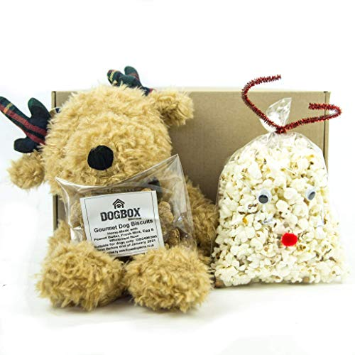 Dogbox Boutique The Gift Box Dog Gifts Box Dog Hamper Perfect For Dog Birthday, Christmas Or A Monthly Treat - Bursting Homemade Dog Treats