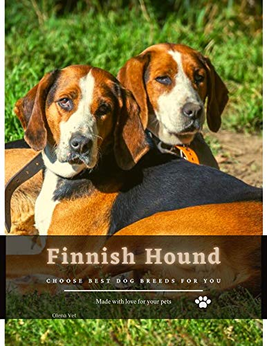 Finnish Hound: Choose best dog breeds for you (English Edition)