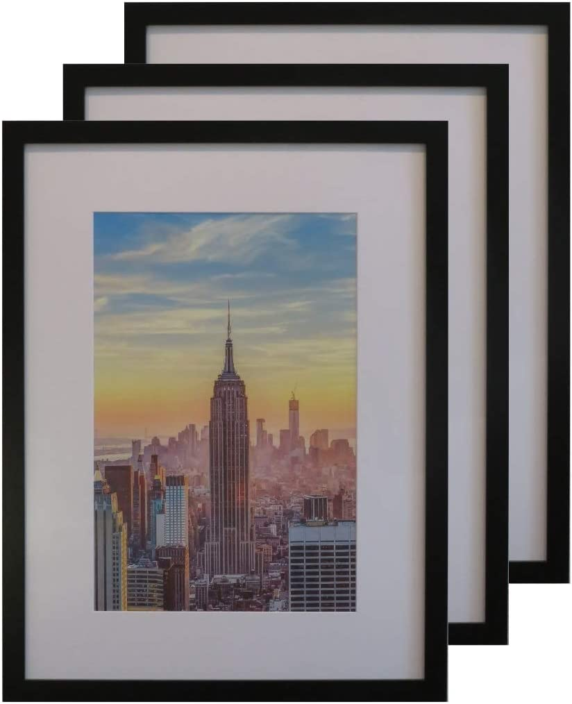 Frame Amo 18x24 Cheap mail order specialty store Black Picture Ranking integrated 1st place with Mat op White 11.5x17.5