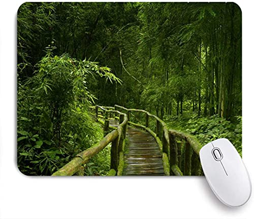 """NOLYXICI Gaming Mouse Pads,Bamboo Forest,Non-Slip Rubber Base Mouse Mats for Laptop,Computer,Home,Office Mousepad 9.5""""x7.9"""""""