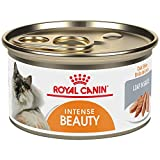 Royal Canin Feline Health Nutrition Intense Beauty 3-Ounce Loaf In Sauce Canned Cat Food (24...
