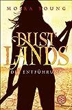 Dustlands - Die Entführung: Roman