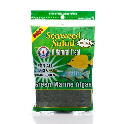 San Francisco Bay Brand Seaweed Salad Green 10ct (30g)