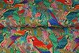 Stenzo – Jersey Stoff mit regebogenfarbenen Papageien I