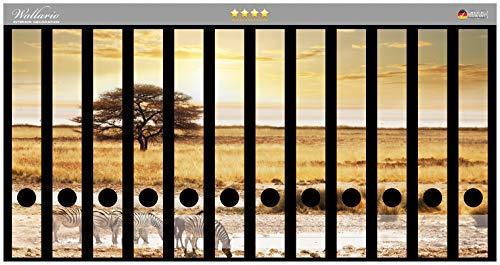 Wallario Ordnerrücken Sticker Safari in Afrika eine Herde Zebras am Wasser in Premiumqualität - Größe 12 x 3,5 x 30 cm, passend für 12 schmale Ordnerrücken