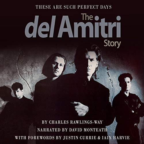 These Are Such Perfect Days audiobook cover art