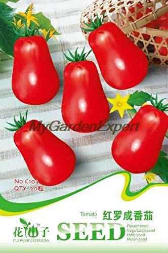 Graines de légumes balcon rouge tomate 20pcs petite tomate / sac C103