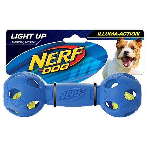 Nerf Dog Vp6804e Illuma LED Hantel Action, Medium, Blau / Rot (2 Stück)