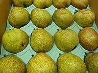 西洋梨ラ・フランス16、18,、20個入り 東洋フルーツ(有)