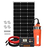 ECO-WORTHY Solar Well Pump Kit, 12V Deep Water Well Pump + 100W Monocrystalline