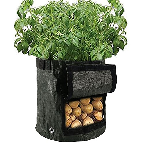 seebesteu 2 Stück Pflanztaschen Pflanzsack 35 x 50cm Kartoffel-Pflanzsack mit Belüftung, Stofftaschen, Kartoffelpflanztaschen mit Lasche, für Gemüse, Kartoffeln, Karotten und Zwiebeln (35 x 50cm)