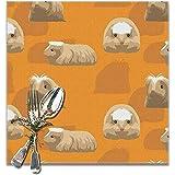 fishappleeatall Meerschweinchen Coronet Cartoon Exquisite Polyester Tischsets für...