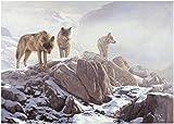 La Manada - Lámina sobre lienzo. Cuadro de lobo ibérico (Canis lupus signatus) 40 x 28 cms....