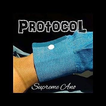 Protocol (Deluxe Edition)