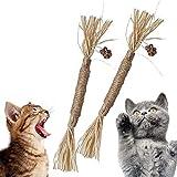 noodlos Catnip Toys Cat Chew Sticks Teeth Cleaning Nature Silvervine Stick Kitten Treats Dental Matatabi Suitable for All Cats