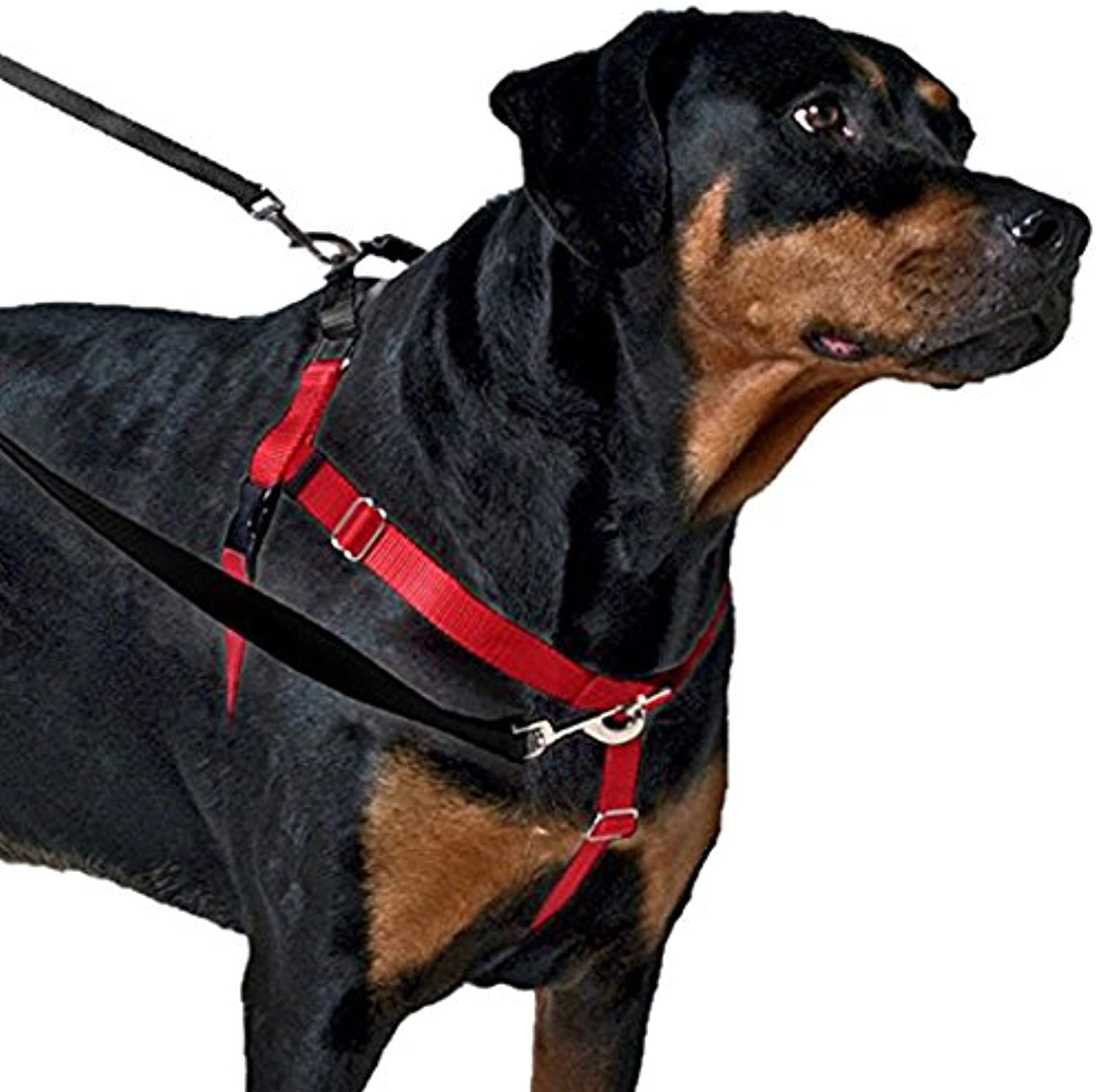 2 Hounds Design Freedom NoPull Harness Only, No Leash, Red, XSmall (5 8Inch Wide)
