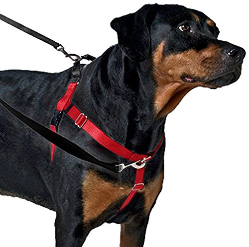 2 Hounds Design Freedom No-Pull Dog Harness | X-Small - XX-Large Adjustable Pet Harness for Small and Large Breeds | Made in USA (5/8