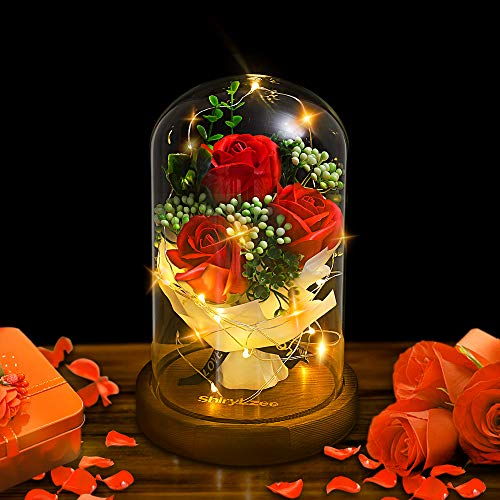 shirylzee La Bella y La Bestia Rosa Encantada Rosa Rojas con Luz de Hadas LED Base de Madera cúpula de Vidrio Regalo para día de San Valentín Día de la Madre de cumpleaños de Boda de Aniversario