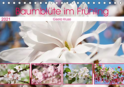 Baumblüte im Frühling (Tischkalender...
