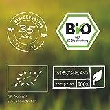 Zoom IMG-1 cinorrodo in polvere bio 1000g