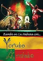 Rumba En La Habana Con / [DVD] [Import]