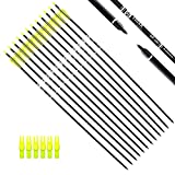 Tiger Archery 30Inch Carbon Arrow Practice Hunting Arrows with Removable Tips for Compound
